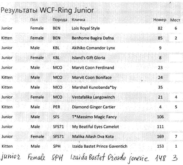WCF Ring Kitten 22 апреля 2017 года
